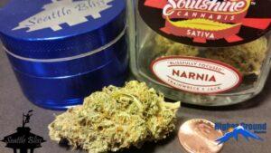 Narnia flower by Soulshine